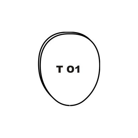 """""""TO1"""" TITANIUM LINGUAL..."""